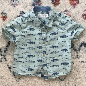 Baby Zara Button Shirt